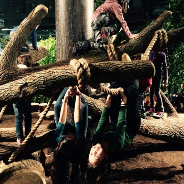 TreeMash-3393